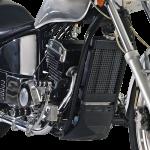 Spyder-350-bike-engine